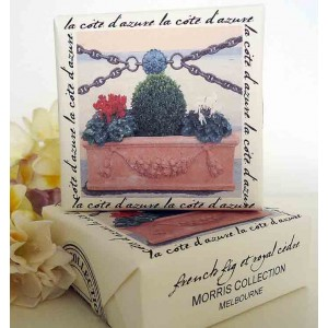 Bath Soap, French Fig & Royal Cedre Planter Design